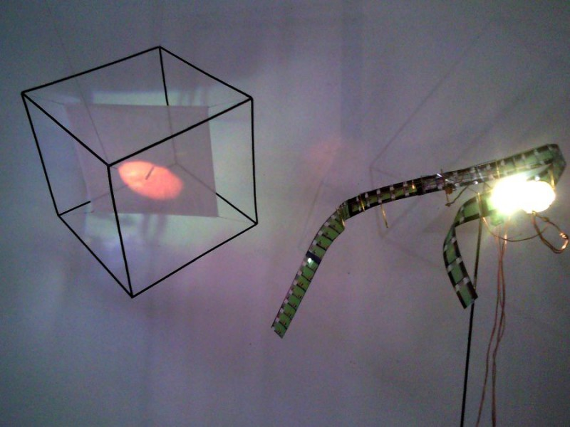Vernissage - Ausstellung im WMF Kunstkabinett - Przemek Zajfert