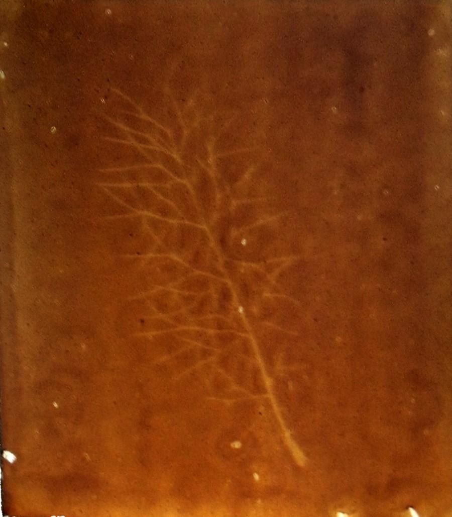 Heliographie, Mihaelas Garten No 3