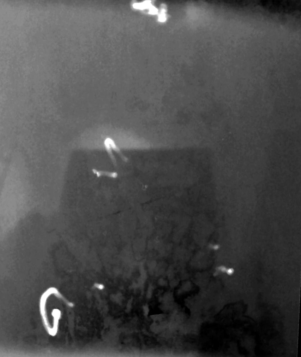 Selfie mit Lochkamera, No 31