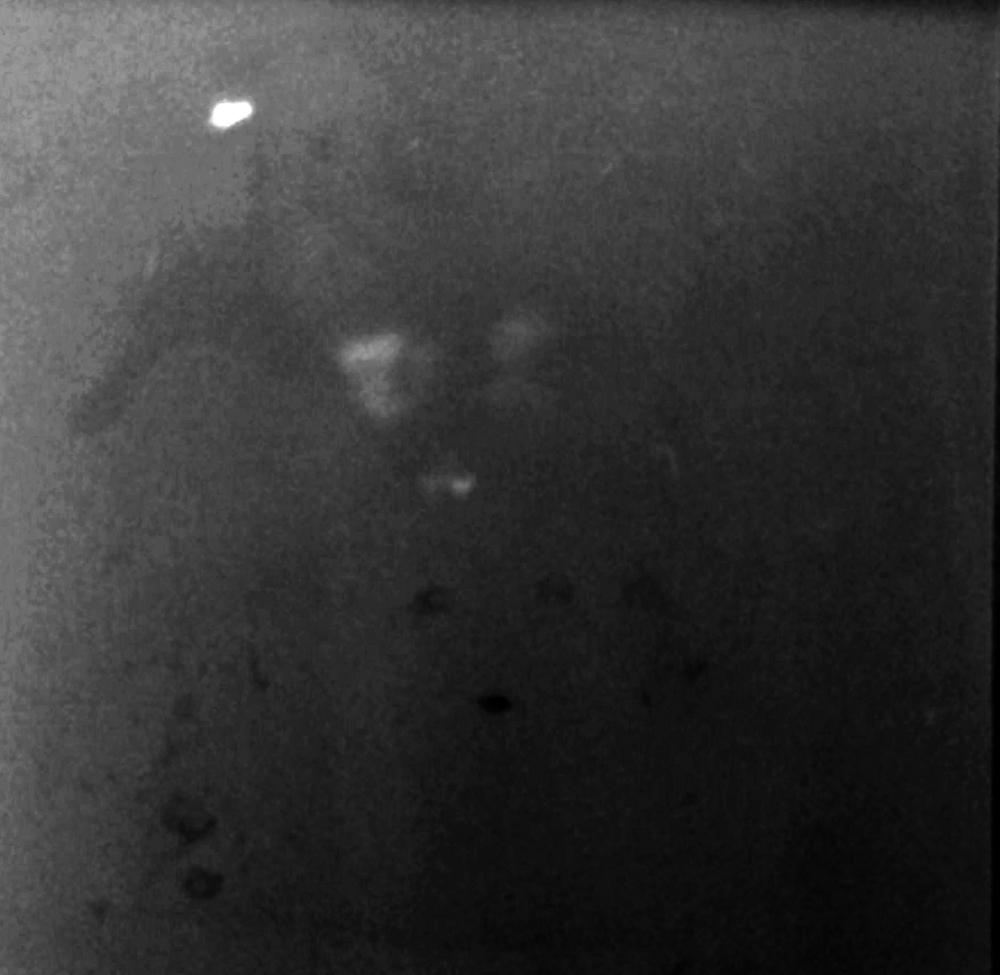 Selfie mit Lochkamera, No 85