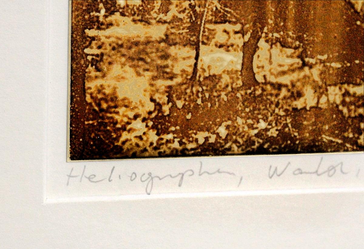 Heliographie nach Niépce, Unikat, Wald , Metalplatte, Lavendelöl, Bitume de Judée